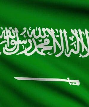 Buy Hamer Ginseng Coffee Candy Shop Saudi Arabia