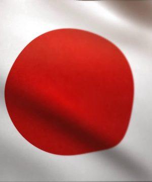 Buy Hamer Ginseng Coffee Candy Shop Japan