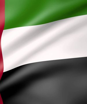 Buy Hamer Ginseng Coffee Candy Shop UAE