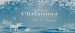 Christmas Banner Overlay
